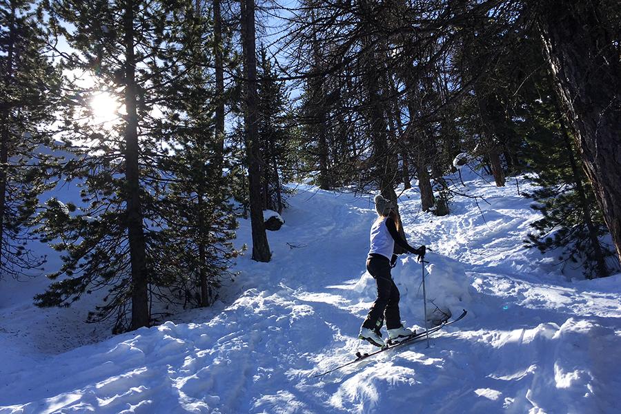 Ski de randonnée Hautes Alpes Virée Verticale