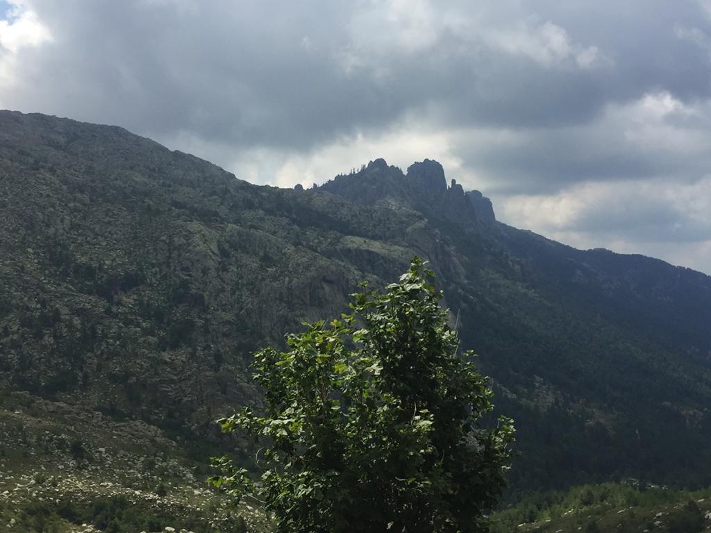 Les aiguilles de Bavella vues du refuge d'Asinau, Virée Verticale