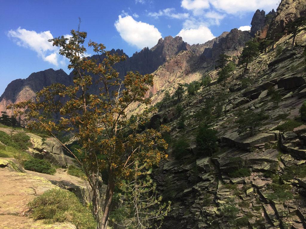 Un aperçu des paysages sauvages du GR20 corse, Virée Verticale