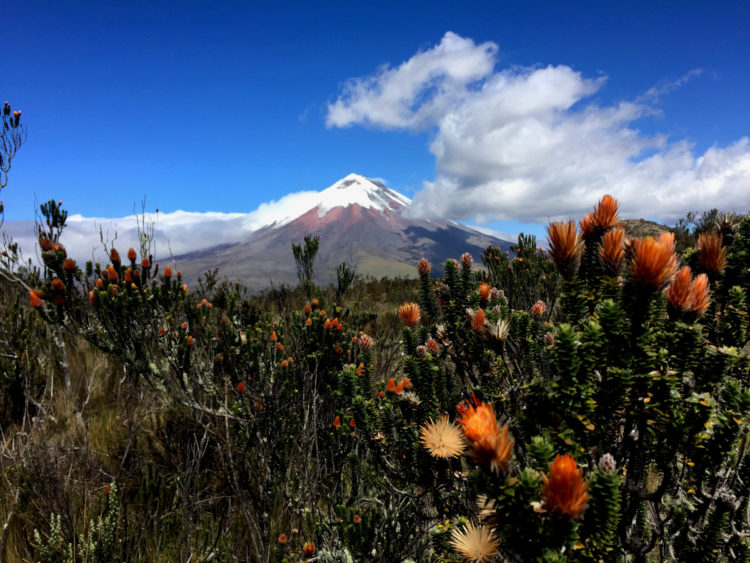 Ascension Cotopaxi